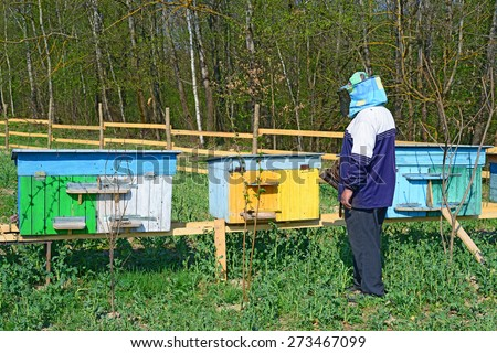 Beekeeper inspects bee hive - stock photo