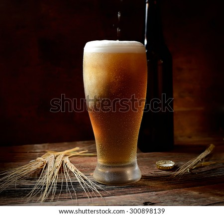 beer, barley on wooden background  - stock photo