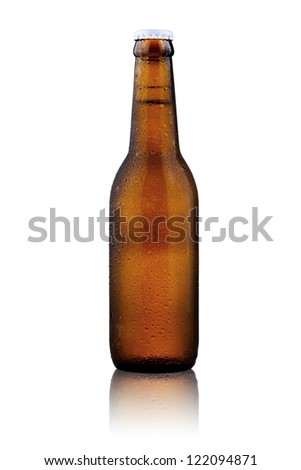 Beer bottle isolate on white background - stock photo