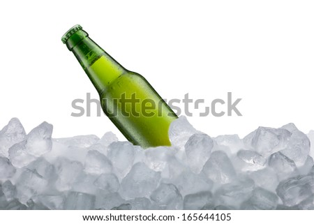 Beer Bottle on ice cube - stock photo
