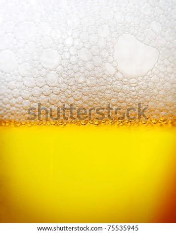 Beer closeup - stock photo