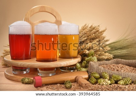 beer crate and beer glasses with hops, wheat, grain, barley and malt - stock photo