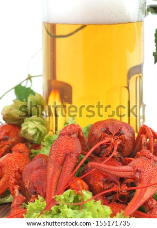 Beer crawfish       - stock photo