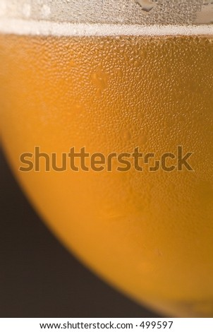 Beer Detail - stock photo