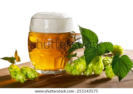 beer glass and hops isolated on the white background - stock photo