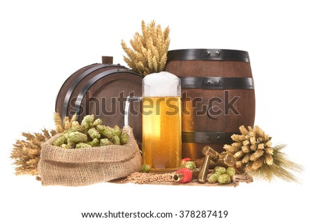 beer glass and two beer barrels with hops, wheat, grain, barley and malt isolated on white