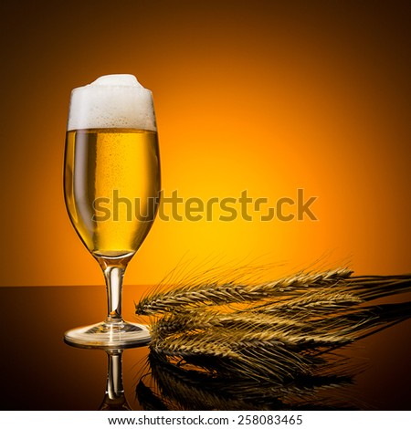 beer glass with corn ears - stock photo