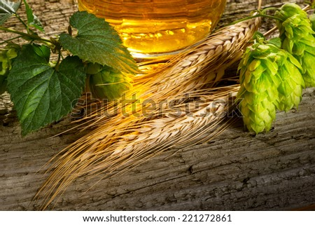beer hops and barley - stock photo