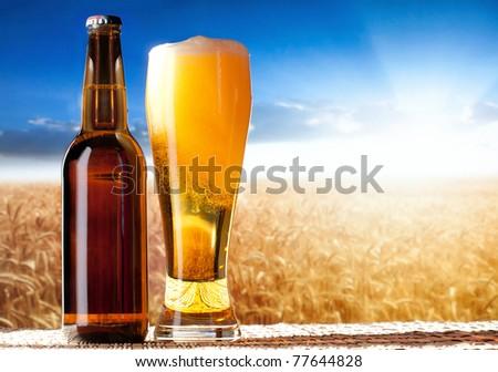 beer in a landscape - stock photo