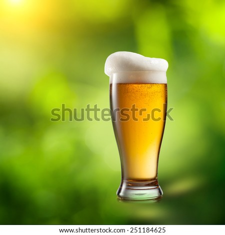 Beer in glass on natural green background - stock photo