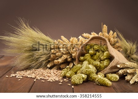 beer ingredients â?? hops, wheat, grain, barley and malt