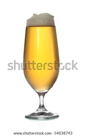 Beer or lager isolated on white background - stock photo