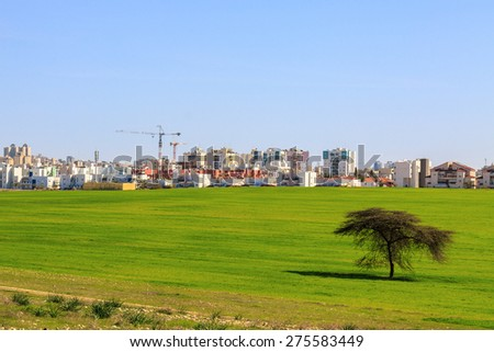 Beer Sheva suburb behind a green field and tree, Israel - stock photo