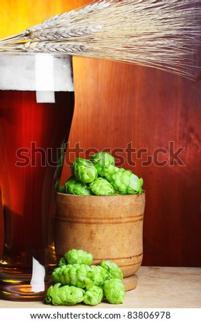 beer with hop and wheat still-life - stock photo