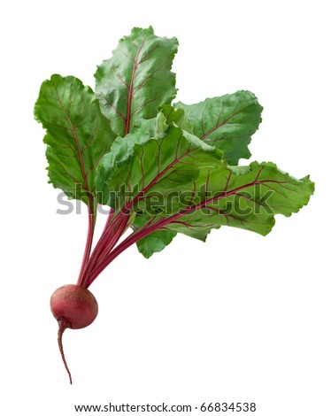 Beet isolated on a white background - stock photo