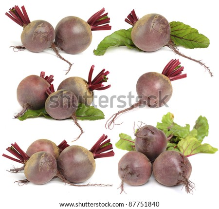 Beet vegetable  set  isolated on white background - stock photo