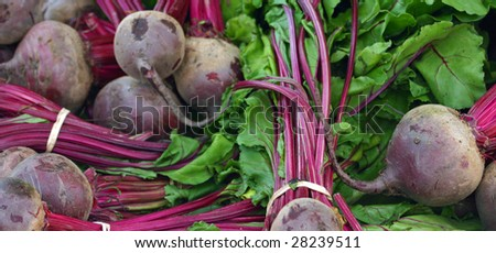 Beets (Beta vulgaris) - stock photo