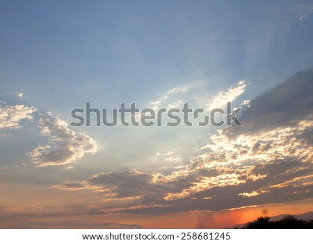 Before the evening sky and the sun. - stock photo