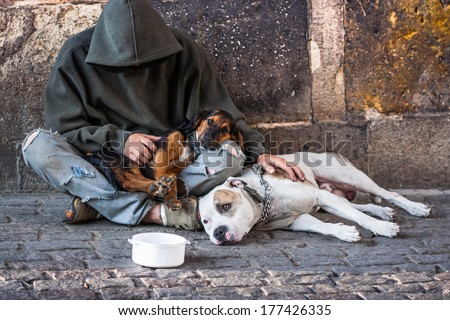 beggar, homeless with two Dogs near Charles Bridge, Prague - stock photo