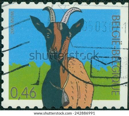 BELGIUM - CIRCA 2006: a stamp printed in the Belgium shows Goat, Farm Animal, circa 2006 - stock photo
