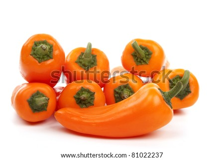 Bell pepper isolated against a white background