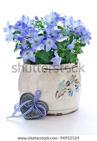 bells in a flower pot for Valentine's Day - stock photo