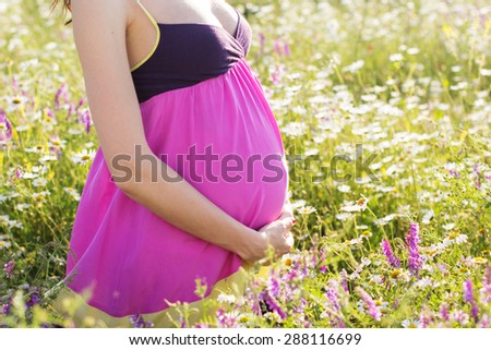 Belly of pregnant woman in meadow of chamomile flowers, sunset time, new life concept - stock photo