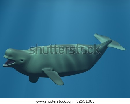 Beluga - White Whale - stock photo