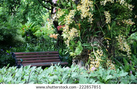 Bench and Beautiful background - stock photo