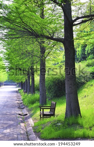 Bench and fresh green