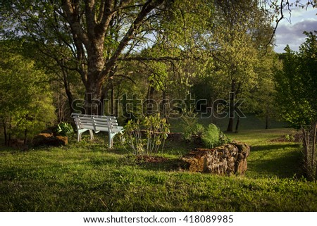 Bench and oaks in a countryside park at dusk - stock photo