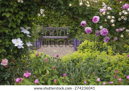 Bench In A Rose Garden.
