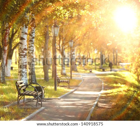 bench in a summer garden, the rays of the sun - stock photo