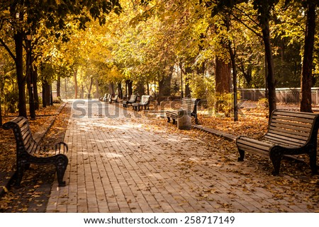 Bench in autumn park. Autumn landscape - stock photo