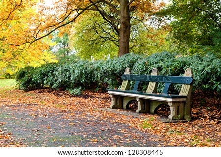 bench in colorful autumn park