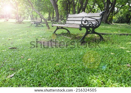 bench in summer park with sun light                              - stock photo