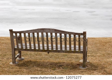 bench in sunny day