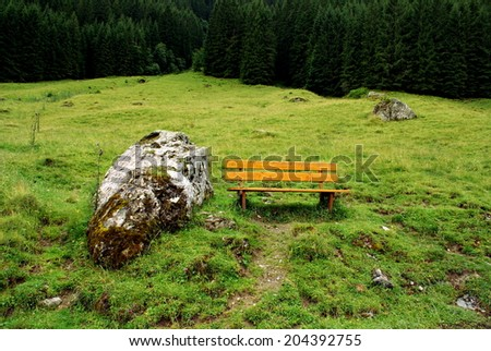 Bench in the middle of the forest of the Alps Mountains - stock photo