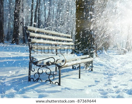 Bench in the park covered with snow - stock photo