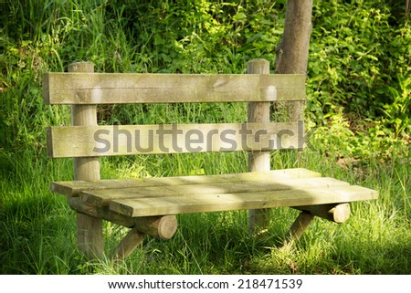 Bench in the park on trees background - stock photo