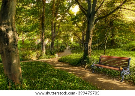 Bench in the summer park with old trees and footpath. - stock photo