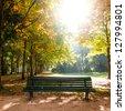 bench in tiergarten berlin in late summer - stock photo