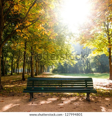bench in tiergarten berlin in late summer - stock photo