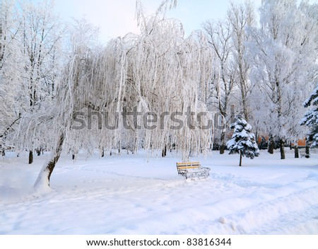 bench in winter park - stock photo