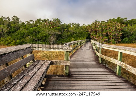 Bench on a raised wooden boardwalk in the wetlands of Everglades National Park, Florida - stock photo
