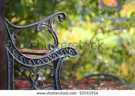 Bench overlooking autumn leaves