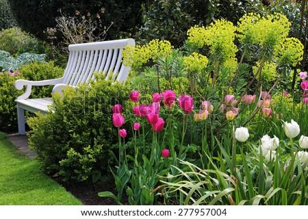 6 plantas perennes para crecer en suelos pobres