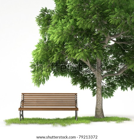 bench under a tree isolated on white background with clipping path - stock photo
