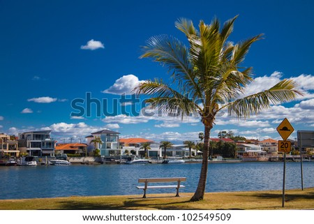 Bench under palm tree on Budds Beach, Gold Coast, Queensland, Australia - stock photo