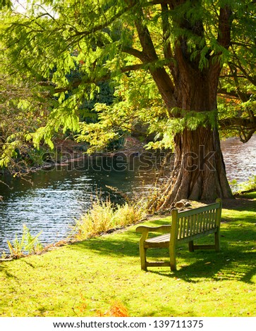 Bench under the tree in the Royal Botanic Gardens in London - stock photo